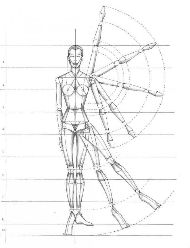 rule of proportion the human body figure drawing martel fashion rh martelnyc com drawing free body diagrams physics classroom answers drawing free body diagrams statics