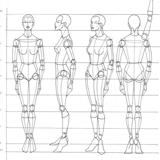 Line Drawing Female Body : Rule of proportion the human body figure drawing