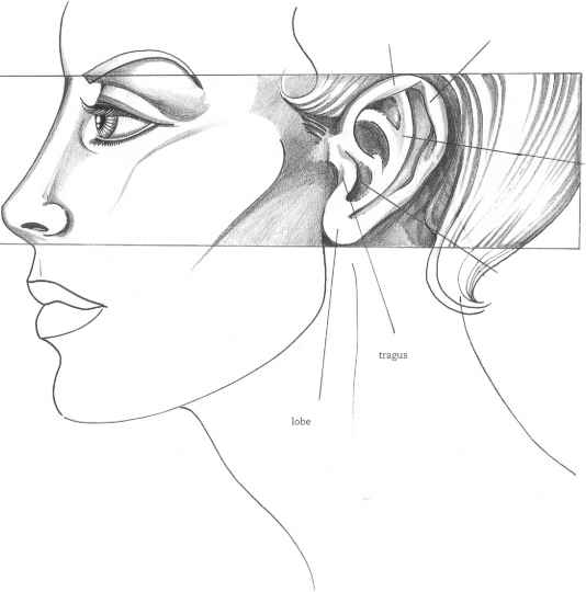 Profile face sketch