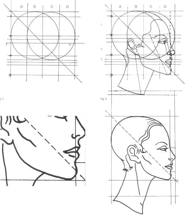 the mouth analysis and structure figure drawing martel fashion