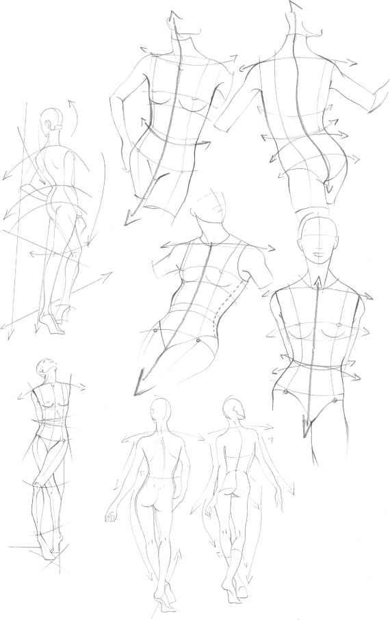 The Upper Body Figure Drawing Martel Fashion